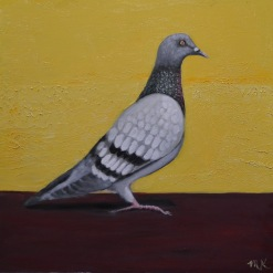 Pigeon-Yellow Wall