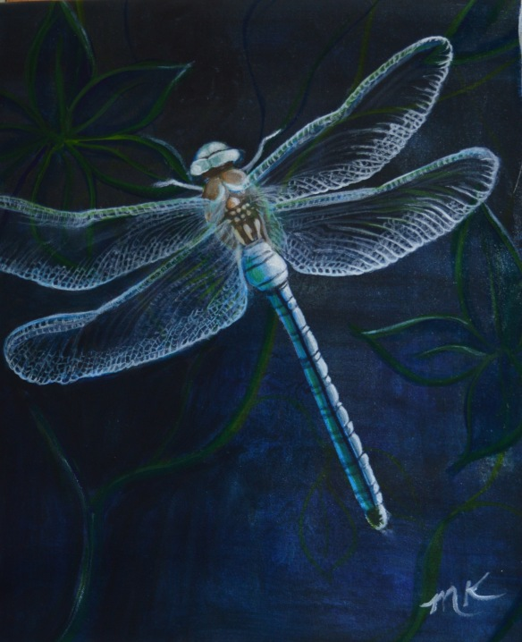 blue dragonfly midnight